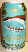 0,35L Big Wave